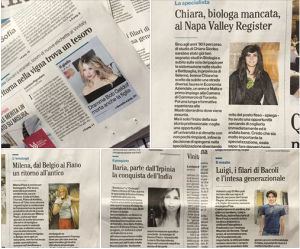 "collage su ""Il Mattino"" newspaper"