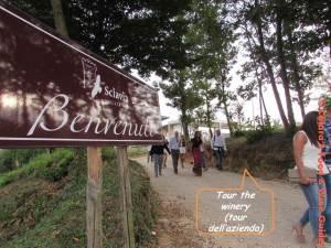 wine tour in caserta area